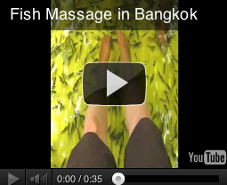 Fish Massage in Bangkok on you tube