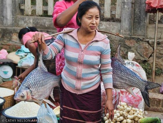 woman carrying fish in luang prabang, laos