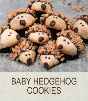 baby hedgehog cookies | she paused 4 thought