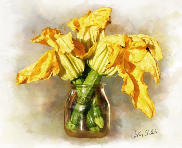 watercolor-painting-squash-blossom-