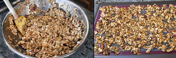 pumpkin-granola-mix