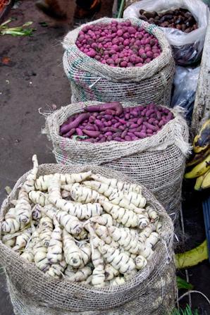 potatoes in bogota colombia