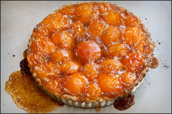 Apricot Almond Tart | She Paused 4 Thought