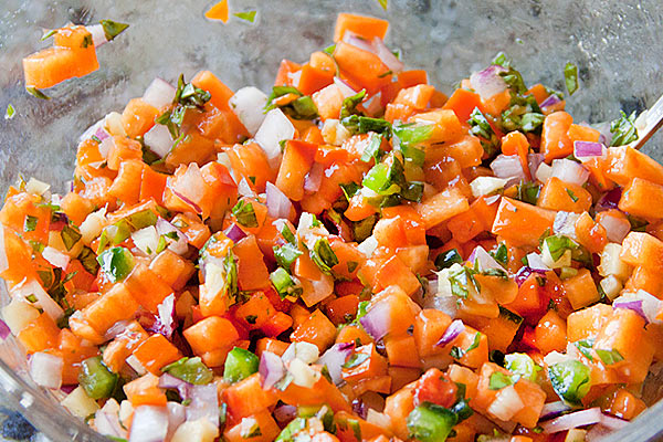 Persimmon Salsa | She Paused 4 Thought