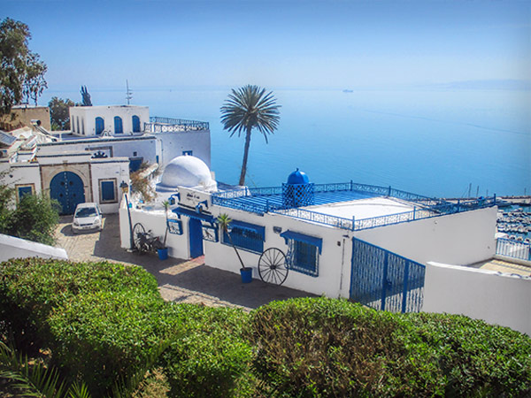 Cafe in Sidi Bou Said Tunisia | She Paused 4 Thought